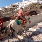 Donkey riding up to Oia, Santorini
